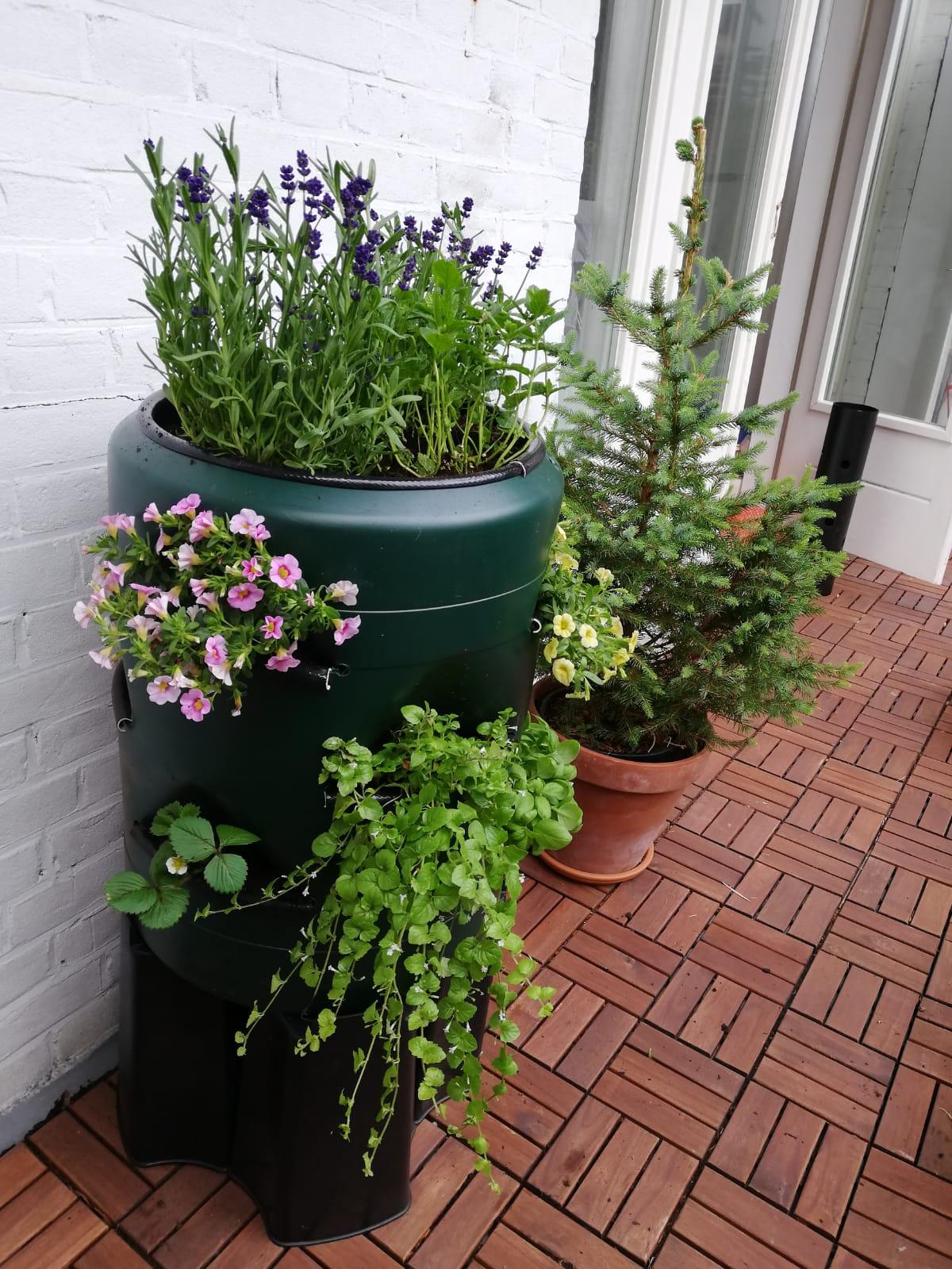 Verticale tuin met ingebouwde wormenbak