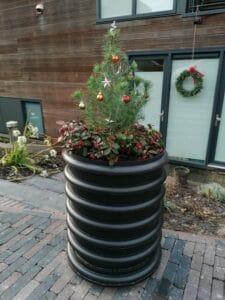 wormenhotel met kerstboom